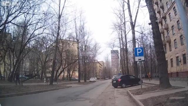 Sokaktaki koca ağacın devrilme anı
