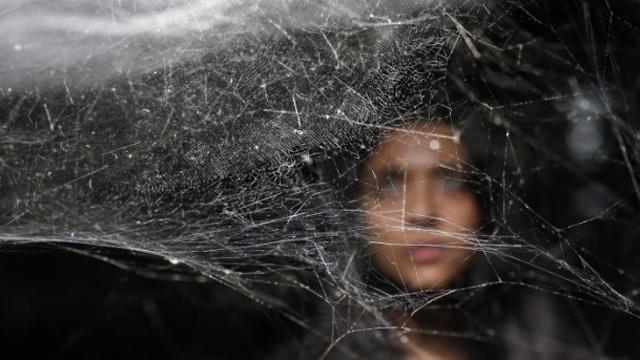New York'ta örümcek ağı sergisi