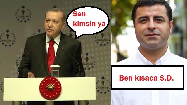 HDP'den çok konuşulacak Erdoğan'lı reklam..