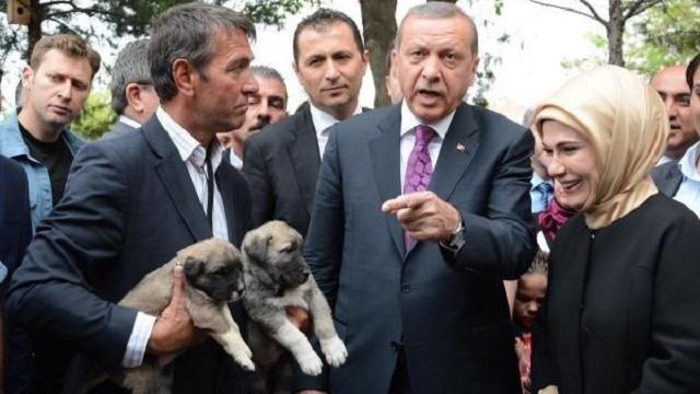 Erdoğan: Beni neden çekiyorsunuz, onu çekin