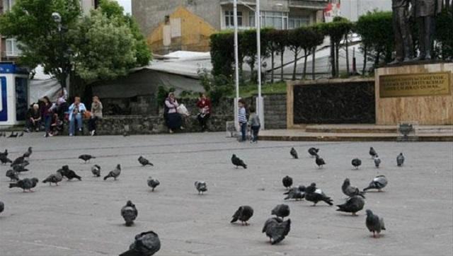 Saadet partisi mitingine sadece güvercinler gitti