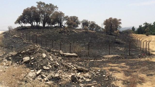 Times: TSK Lice'de yangın çıkardı