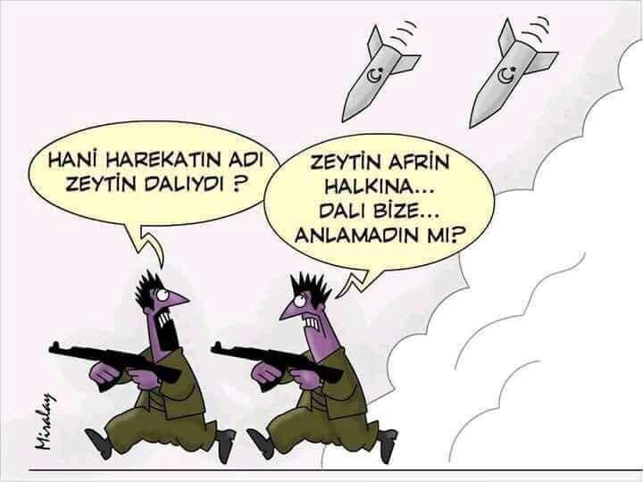 ZEYTİN VE DALINDAN  NASİPLENENLER..